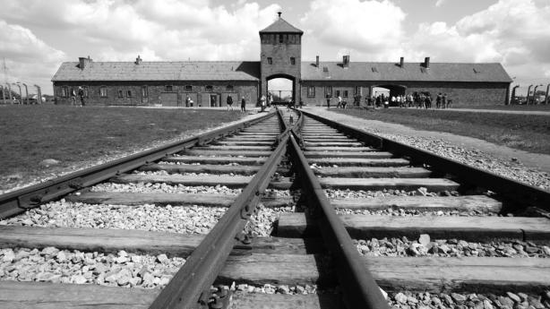 did-holocaust-place_8d2c2232f868bd9c